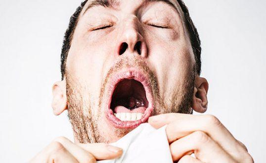 Understanding Flu